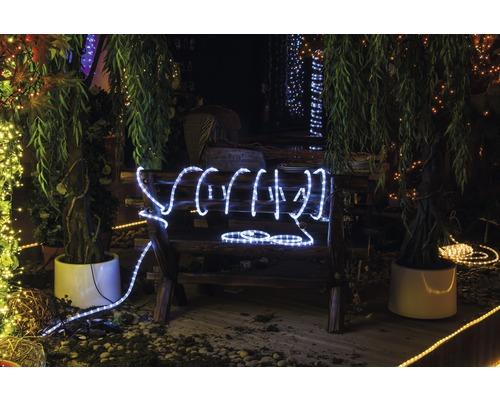 Cordon lumineux LED Lafiora extérieur et intérieur 8m blanc froid