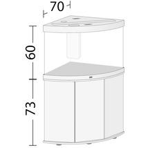 Kit complet d'aquarium JUWEL Trigon 190 SBX avec éclairage LED, filtre, chauffage et meuble bas noir-thumb-5