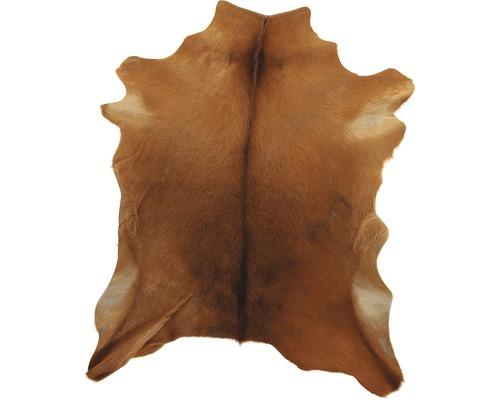 Peau de chèvre marron 70x55 cm
