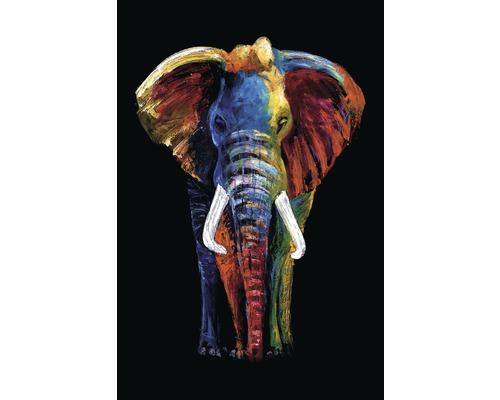 Panneau décoratif Elephant 61x91 cm