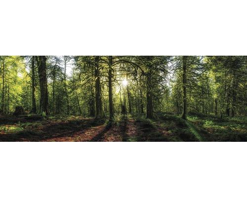 Panneau décoratif 48x138 cm, Golden Forest