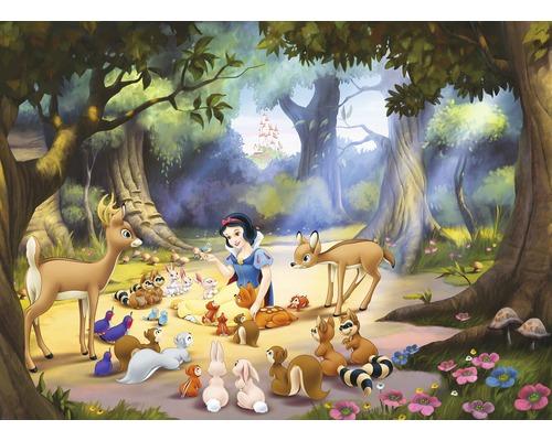 Papier peint photo papier Disney Blanche neige 184 cm x 254 cm