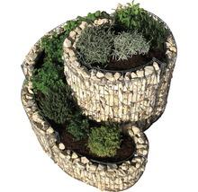 Spirale à fines herbes Belissa, petite, 90x110x60 cm