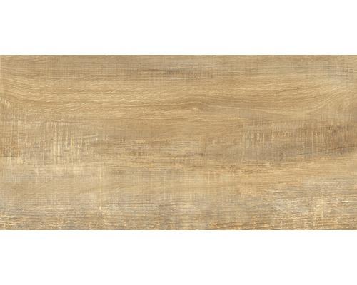 Carrelage pour sol et mur en grès cérame fin Wald miele 31x62cm