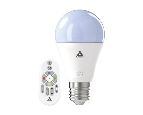 Ampoule LED A60 RGBW CCT à intensité lumineuse variable E27/9W 806 lm 2750 K blanc chaud avec télécommande