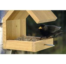 Abri-mangeoire pour oiseaux avec toit en selle 16x19x22cm chêne-thumb-6