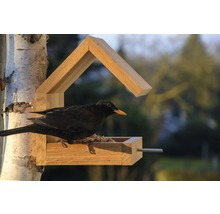 Abri-mangeoire pour oiseaux avec toit en selle 16x19x22cm chêne-thumb-8