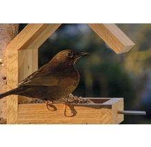 Abri-mangeoire pour oiseaux avec toit en selle 16x19x22cm chêne-thumb-11