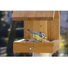 Abri-mangeoire pour oiseaux avec toit en selle 16x19x22cm chêne-thumb-12