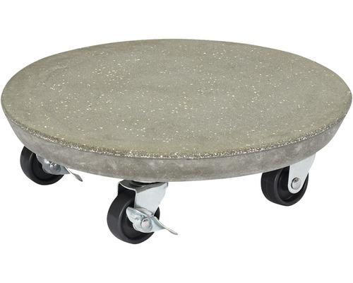 Chariot de plante Multi Roller béton Ø28cm anthracite capacité de charge 100kg