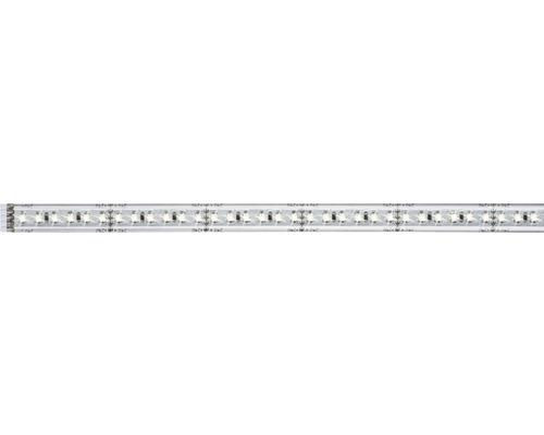 Strip MaxLED 1000 1,0 m 11,5W 1100 lm 6500 K blanc naturel 144 LED revêtu 24V convient comme extension du set de base, convient au Smart Home après extension