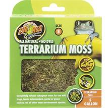 Bodengrund ZOO MED Terrarium Moss S 1,31 l-thumb-0