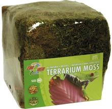 Bodengrund ZOO MED Terrarium Moss Minibale 5,62 l-thumb-0
