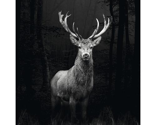 Tableau en verre Grey Deer Head 30x30 cm