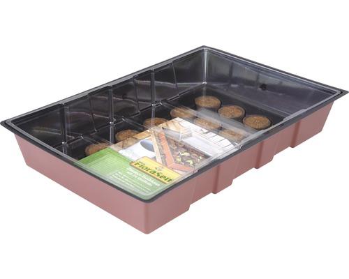 Bac pour mini-serre FloraSelf serre pour rebord de fenêtre 35x24x11 cm, 24 pastilles de germination et couvercle inclus