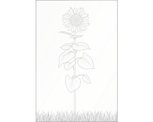 Elément principal Vidrio verre 120x180 cm, fleur