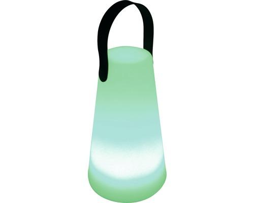 Lampe décorative à LED