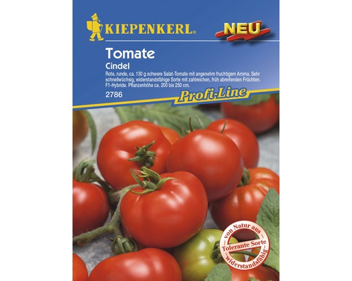 Graines de tomate à salade Kiepenkerl «Cindel F1»