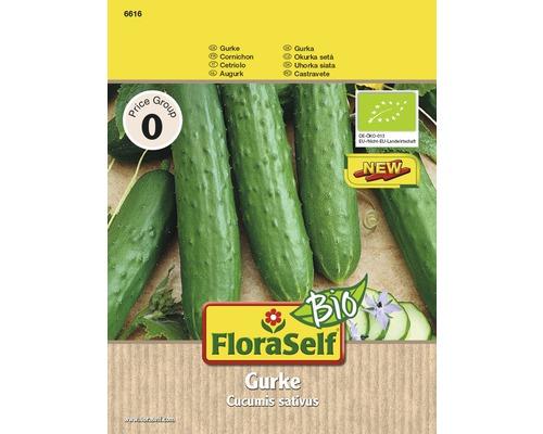 Graines de concombre FloraSelfBio «Marketmore»