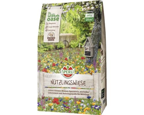 Semences de fleurs des praires Sperli's Nützlingswiese