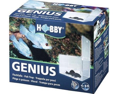 Piège à poisson HOBBY Genius 21x13x15cm