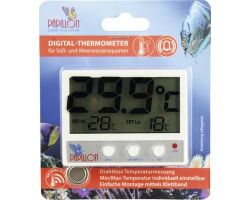 Thermomètre d'aquarium PAPILLON numérique