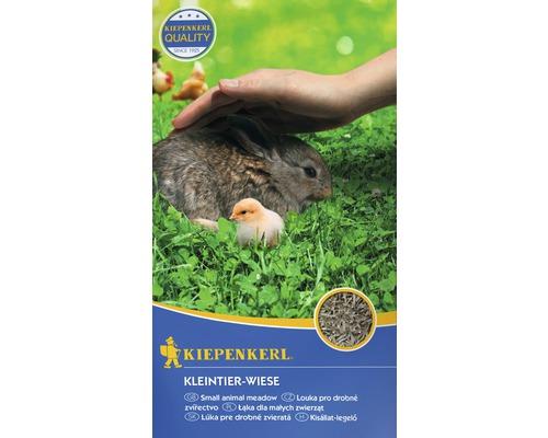 Semences de prairie Kiepenkerl prairie pour petits animaux 10kg 400m²
