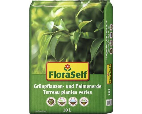 Grünpflanzenerde & Palmenerde