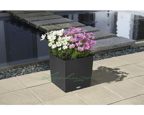 Pot de fleurs Lechuza Cube Cottage, plastique, 50x50x54 cm, granit ...