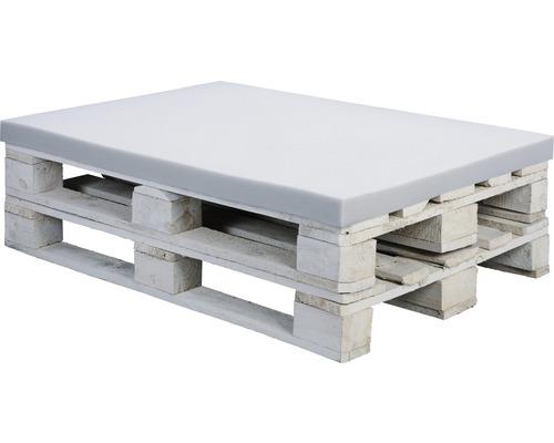 Coussin d''assise pour palettes en mousse Softpur 120x80x5 cm