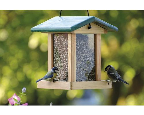 Abri-mangeoire pour oiseaux avec silo de nourriture et toit vert 21x21x28 cm