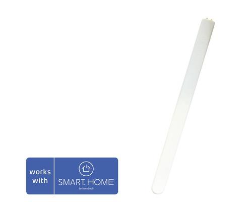Sensative Strips Comfort température + capteur lumineux SMART HOME by hornbach