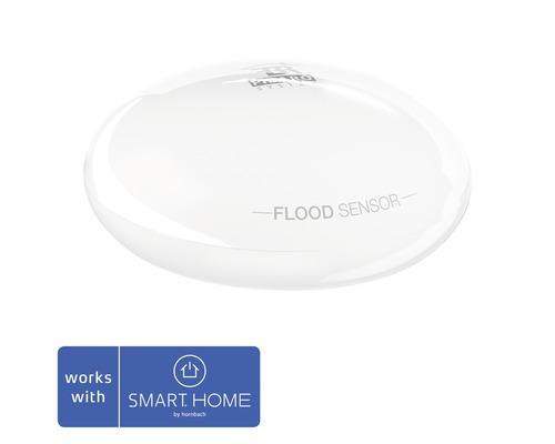 Détecteur d''eau Fibaro SMART HOME by hornbach avec capteur de température