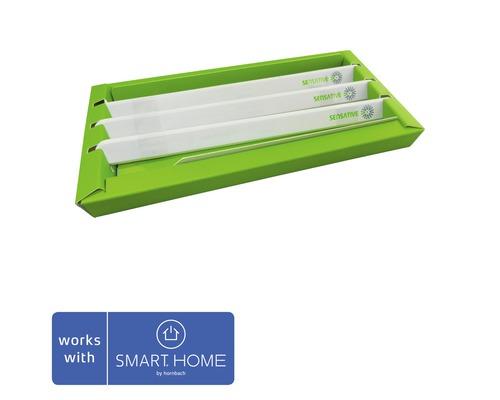 3x Sensative Strips capteur de porte et de fenêtre SMART HOME by hornbach