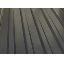 Carport simple weka 617 taille 2 avec toiture en acier 322x612cm traité en autoclave par imprégnation-thumb-1
