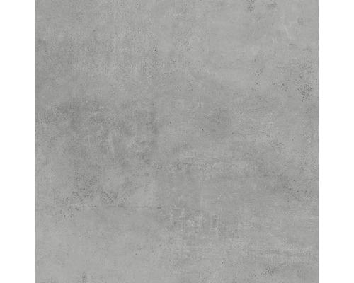 Feinsteinzeug Wand- und Bodenfliese HOMEtek grey matt 100 x 100 cm