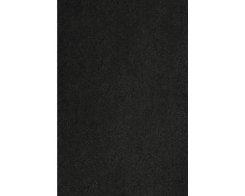 Teppichboden Kräuselvelours Sedna® Proteus 100% Econyl® Garn schwarz 500 cm breit (Meterware)