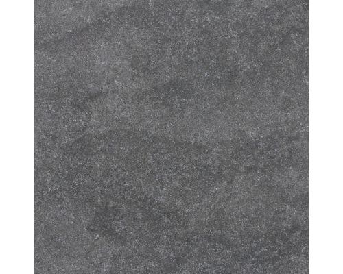 Carrelage sol et mur Udine noir non émaillé 60 x 60 cm