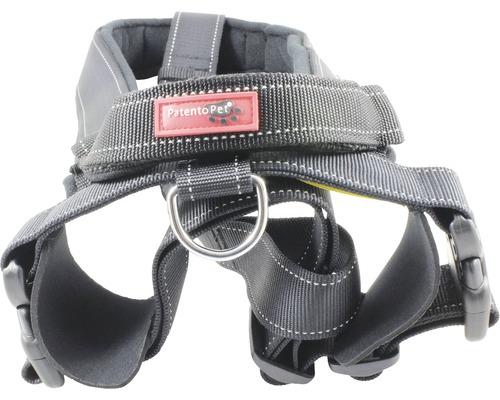 Harnais sport avec laisse intégrée L 66-85cm noir