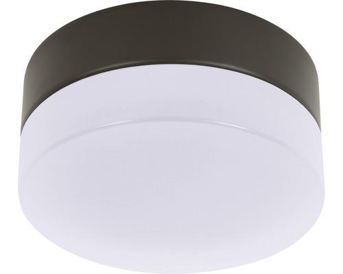 Kit d''éclairage LED Lucci marron foncé avec cache blanc mat GX53 4,8W 510 lm 4000 K blanc neutre