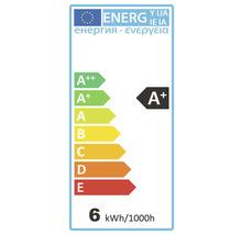 Ampoule sphérique LED à intensité lumineuse variable E27/5,5W(40W) 470 lm 4000 K blanc neutre G45 mat > 90 CRI (Ra)-thumb-1