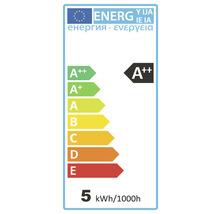 Ampoule sphérique LED à intensité lumineuse variable E27/4,5W(40W) 470 lm 4000 K blanc neutre G45 clair > 90 CRI (Ra)-thumb-1