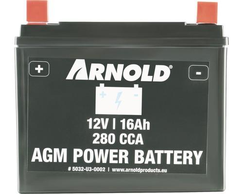Batterie MTD sans entretien pour les tracteurs tondeuses AZ 100 AGM