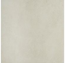 Carrelage pour mur et sol en grès cérame fin Vision Bone verre mat rect. 120x120cm-thumb-0