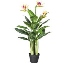 Plante artificielle strelitzia H100cm-thumb-0