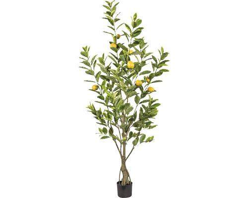 Plante artificielle citronnier H180cm-0
