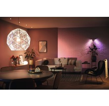 Ampoule LED Philips hue White & Color Ambiance à intensité lumineuse variable violet 2x E27 9,5W 806 lm 2000K-6500 K RGB - avec SMART HOME by HORNBACH-thumb-5