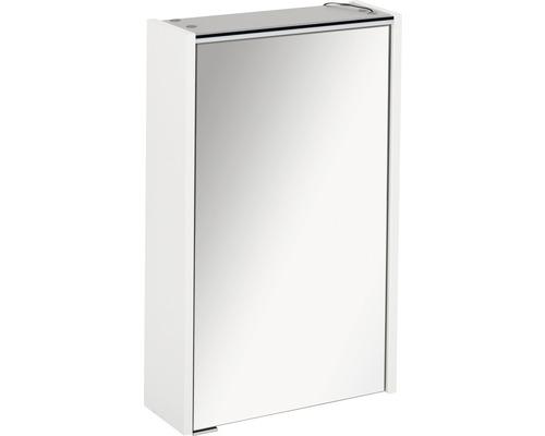 Armoire salle de bains à miroir FACKELMANN Denver Hype3.0 blanc 42x68,5 cm