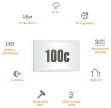 Éclairage extérieur à LED Steinel LN1 blanc avec ampoule 350lm 3000 K blanc chaud 195x300 mm-thumb-3