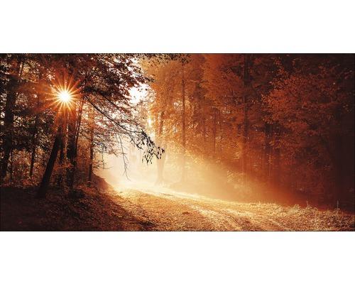 Tableau en métal Autumn Forest ll 100x200 cm